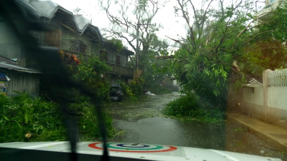 Fallen trees litter the streets of Baler, Aurora after Typhoon Lando (Shot by Anjo Bagaoisan)