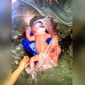 The abandoned baby when it was taken from the creek in Sta Rosa Laguna still wrapped in a transparent plastic bag (Photo from PNP Sta. Rosa Police Community Relations office)